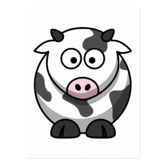 White and black cow postcard