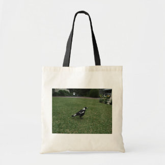 White And Black Crow On The Grass Bags