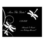 White and Black Dragonfly Save The Date Post Card