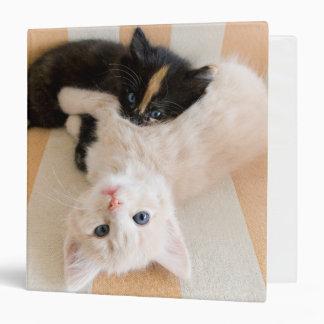 White And Black Kitten Lying On Sofa Binder