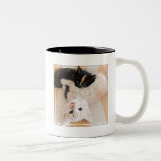 White And Black Kitten Lying On Sofa Two-Tone Coffee Mug