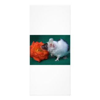 White and Black mouse Orange Tea Rose Rack Card