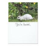 "White and Black Rabbit 5"" X 7"" Invitation Card"