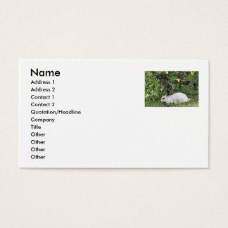 White and Black Rabbit Business Card