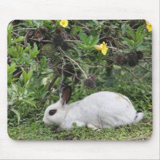 White and Black Rabbit Mousepad