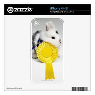 White and black rabbit on blue leash with yellow decal for iPhone 4