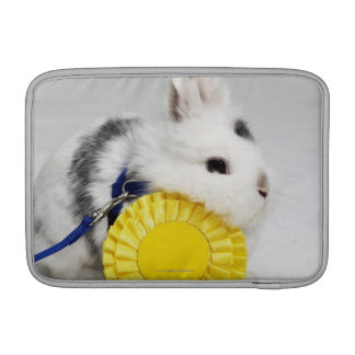 White and black rabbit on blue leash with yellow sleeves for MacBook air