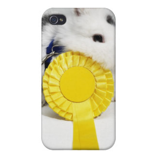 White and black rabbit on blue leash with yellow iPhone 4 cover
