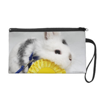 White and black rabbit on blue leash with yellow wristlet