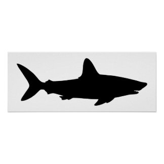 White and Black Shark Poster