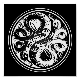 White and Black Yin Yang Chinese Dragons Poster