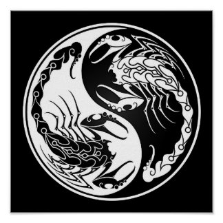 White and Black Yin Yang Scorpions Poster