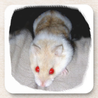 White and blonde albino hamster picture beverage coaster