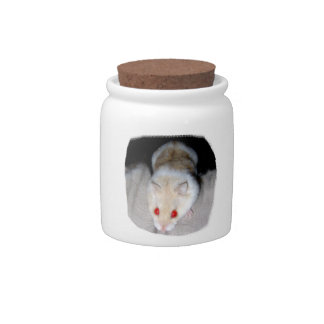 White and blonde albino hamster picture candy jars