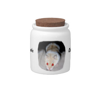White and blonde albino hamster picture candy dishes