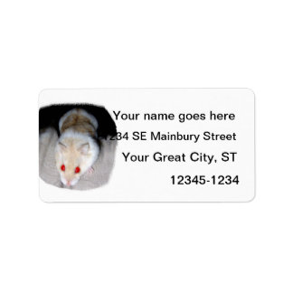 White and blonde albino hamster picture label