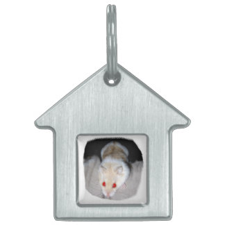 White and blonde albino hamster picture pet ID tag
