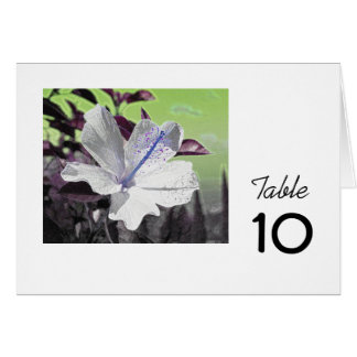 White and Blue Hibiscus Table Card