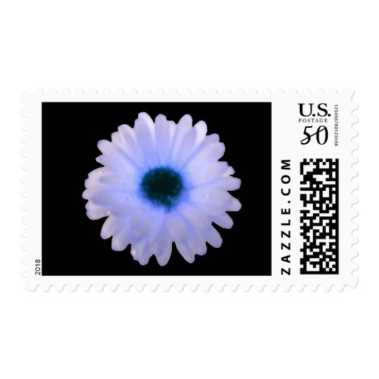 White and Blue Marigold Postage Stamps
