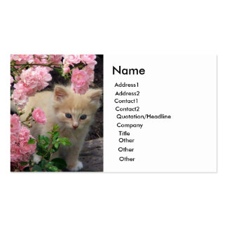 White and Brown Kitten Business Card