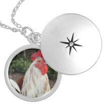 White And Brown Speckled Rooster, Locket Necklace