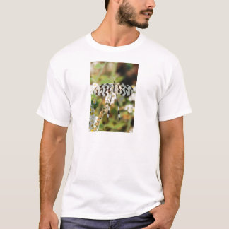 White and Chocolate Brown Fantail Butterfly T-Shirt