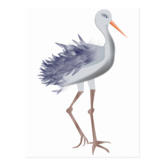 White and Gray Crane With Textured Feathers Postcard