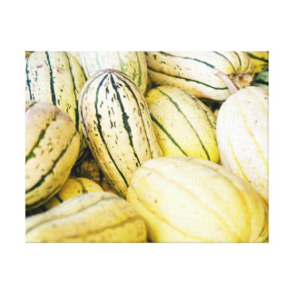 White and Green Squash for the Harvest Canvas Print