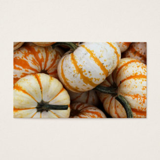 White and Orange Mini Pumpkins Business Card