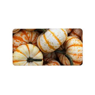 White and Orange Mini Pumpkins Label