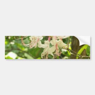 White and Pink Azaleas Bumper Sticker
