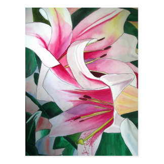 White and Pink day lily watercolor art flower Postcard