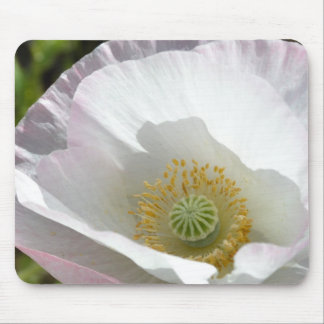 White and Pink Iceland Poppy Macro Mouse Pad