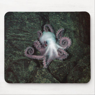 White and Pink Octopus Mouse Pad