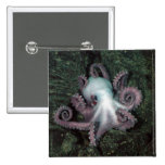White and Pink Octopus Pin