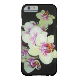 white and pink orchid iPhone 6 case