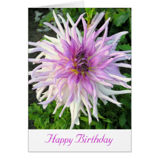 WHITE AND PINK SPIKEY DAHLIA/HAPPY BIRTHDAY CARD