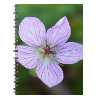 White and Pink Wildflower in the Sandia Mountains Spiral Note Books