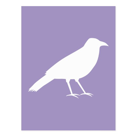 White and Purple Crow Design. Postcard