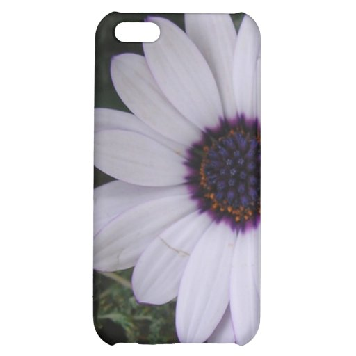 White and Purple Daisy iPhone 5C Case