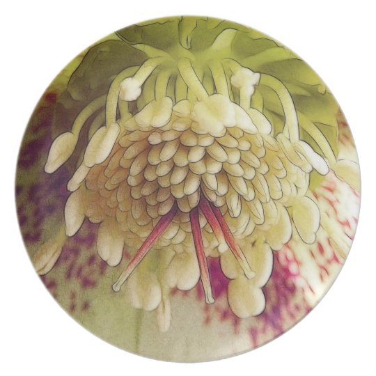 White And Purple Hellebore Dinner Plate