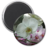 White and Purple Orchids Magnet