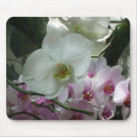 White and Purple Orchids Mouse Pad