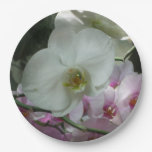 White and Purple Orchids Paper Plate