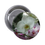 White and Purple Orchids Pinback Button