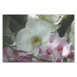 White and Purple Orchids Tissue Paper