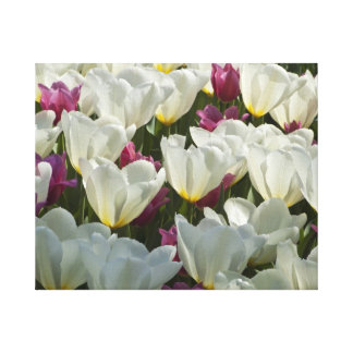 """White and Purple Tulips 20"""" x 16"""" Wrapped Canvas"""