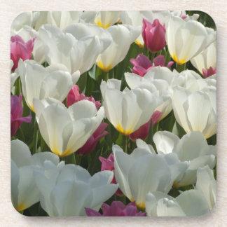 White and Purple Tulips Coasters