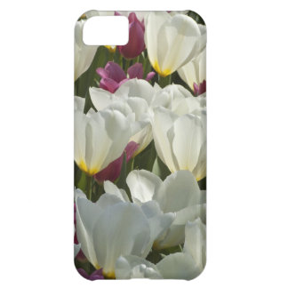 White and Purple Tulips Floral iPhone 5C Case