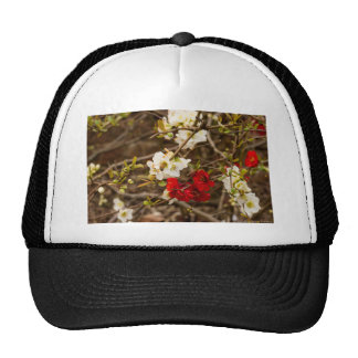 White and Red Blossoms Trucker Hat